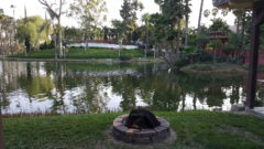 One of the many firepits at Rancho Capistrano. Creatve Church Arts Conf. 2018.